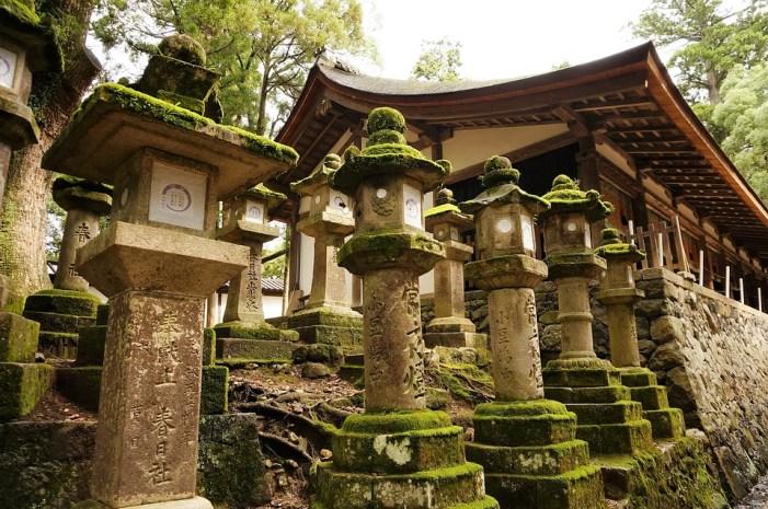 Lanterne, Japon, Temple, Kasuga Taisha, Shinto, Nara