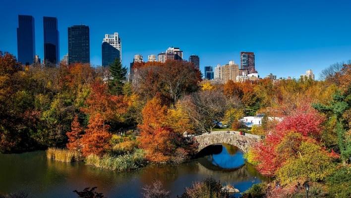 Central Park, Cidade De Nova York, Urbanas, Queda