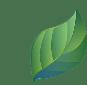 葉, ブルー グリーン, 様式化されました, グラデーション, エコ, バイオ