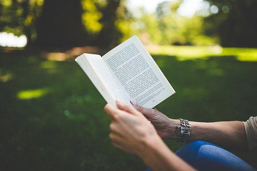 Book, Woman, Park, Read, Reading, Hobby