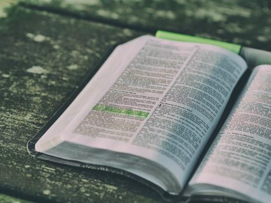 聖書, 本, オープン, 開く聖書, 開いた本, ページ, 章, 聖書の朗読, 聖書研究, 経典, 聖書の経典