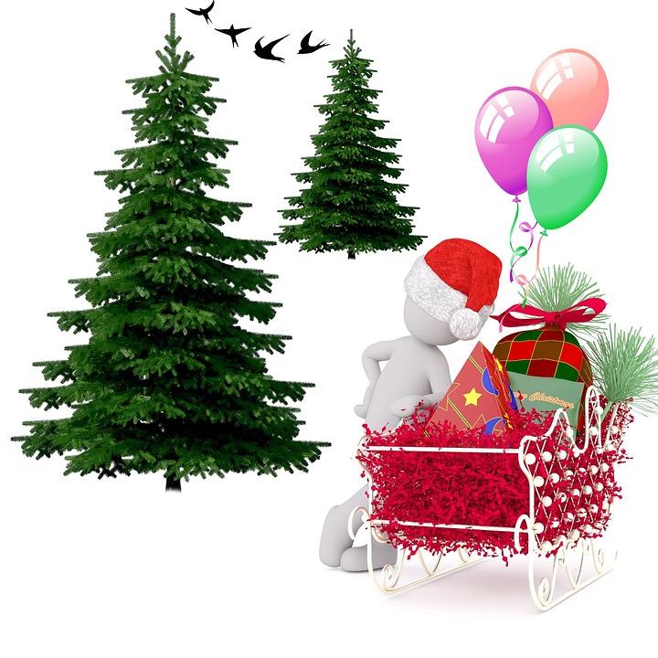 Kostenlose Illustration Tanne Weihnachten Festival