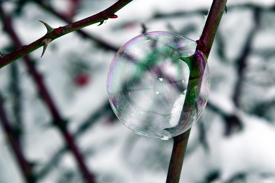 Bubble, Soap Bubble, Winter, Thorns, Bubble And Thorns
