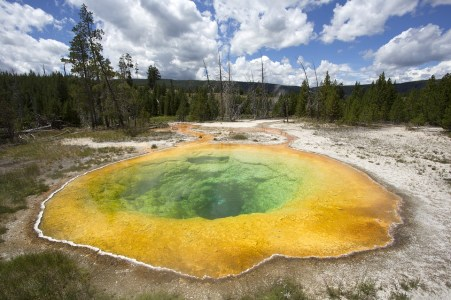 Image for Yellowstone National Park, USA