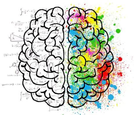 Cerebro, Mente, Psicología, Idea, Dibujo