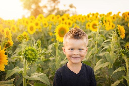 Child, Sun, Sunflowers, Field, Happy