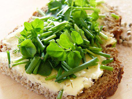 chive recipes