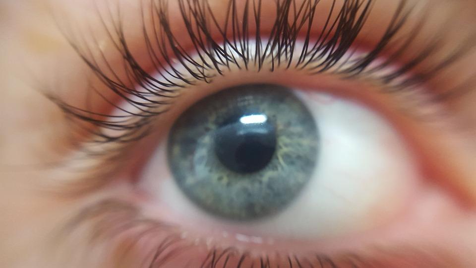 眼, 睫毛, 眼球, 蓝眼睛, 蓝色的眼睛, 重点点, 皮肤, 特写, 模型, 化妆品, 高加索, 光明