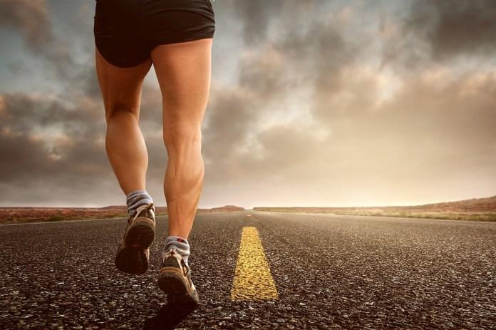 Trotar, correr, deporte, jog, deportivo, carrera