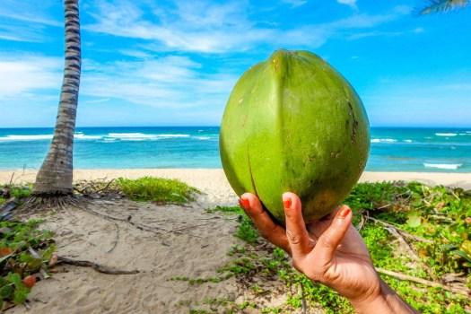 Noce Di Cocco, Spiaggia, Estate, Mare, Seychelles