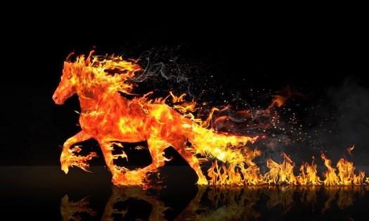 火馬, 馬, 消耗, 火災