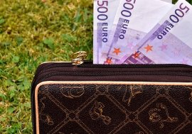 Geldbeutel, Geldbörse, Scheine und Kreditauszahlung!