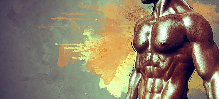 筋肉, 男, 完成, 人間, 人, スポーティー, 体, いい結果, ジム
