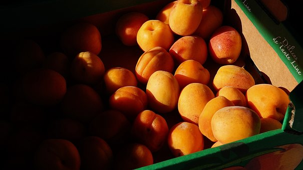 Fit, Healthy, Apricots, Health, Eating