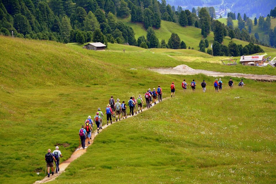 Hiking, Trail, Mountain, Walk, Group, Backpack