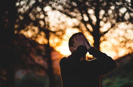 People, Man, Cry, Sad, Tree, Sunset