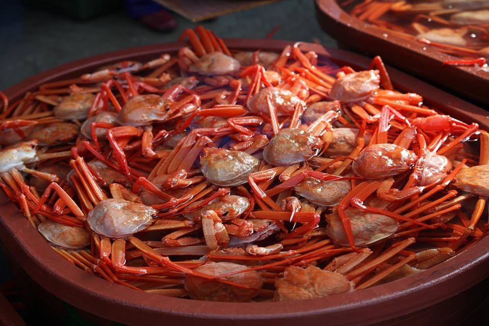 Le crabe des neiges(대게)
