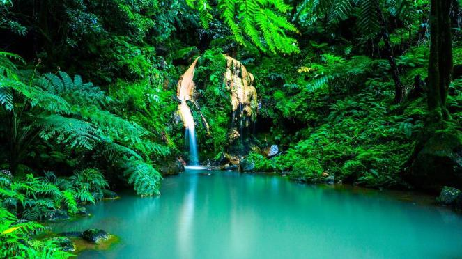 Açores, Cachoeira, Oásis, Floresta, Portugal, Paisagem