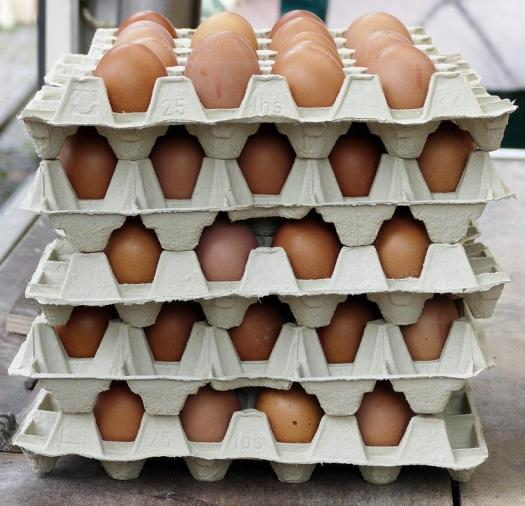 Ovos, Ovos De Galinha, Caixa De Ovos, Lotes De Ovos