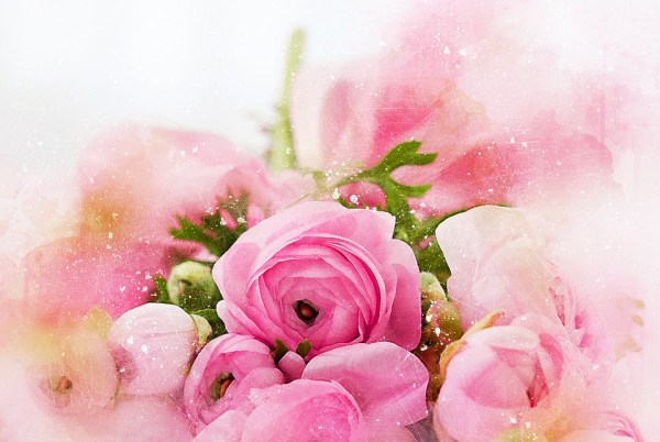 Flowers Roses Bouquet 183 Free image on Pixabay