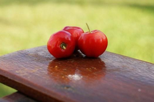 Acerola, Frutta, Vitamina