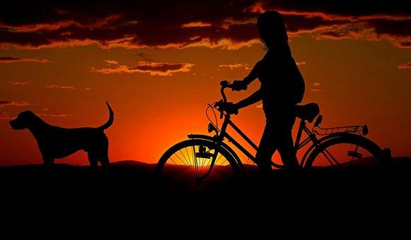 Woman, Girl, Bike, Sunset, Walk