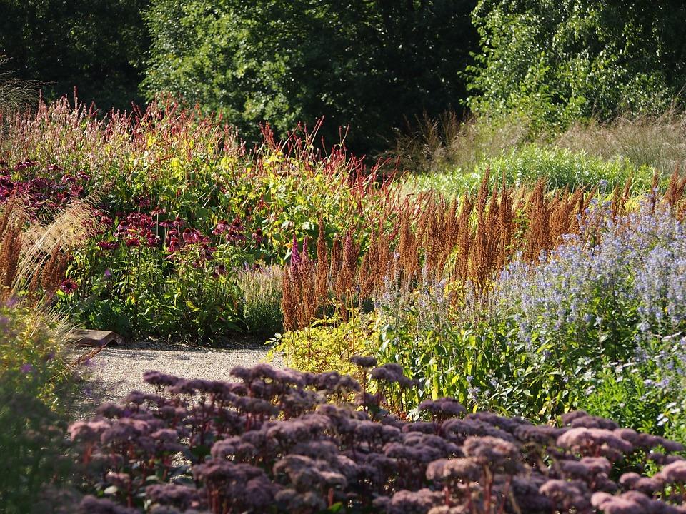 beautiful garden inspiration