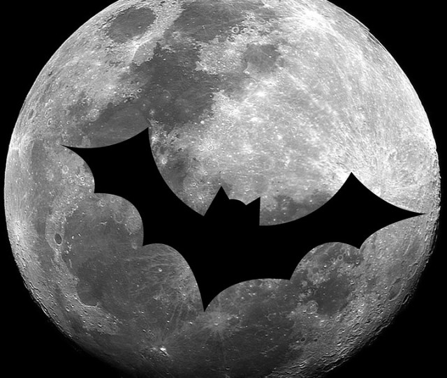 Bat Luna Halloween Autumn October Decoration