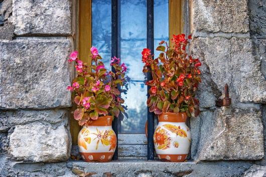 Vaso, flores, natureza morta, close-up, vida no campo