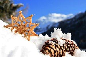 アスタリスク, 円錐形の松, 新鮮な放射性降下物, 雪, ブルー, ホワイト