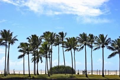 Ilhéus, Bahia, Brasil, Praia, Mar, Viajem, Paisagem