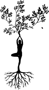Silhouette, Women, Tree, Yoga, Meditation, Harmony