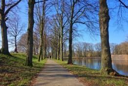 Lane, Boom, Gracht, Water, Muur, Fort, Park, Winterdag