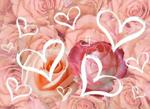 Cartolina, Fiori, Per Favorito, Amore, Valentine