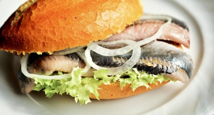 Fischbrötchen Pesce Aringhe - Foto gratis su Pixabay