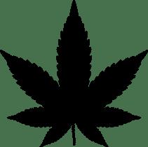 Drugs, Marijuana, Cannabis, Drug, Hemp, Leaf, Plant