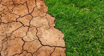 Global, Calentamiento, Climático, Cambio