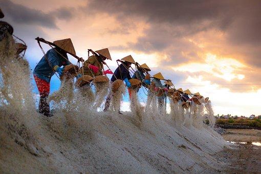 Salt, The Smoke, Vietnam, Field