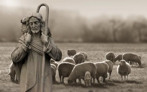 宗教, 信仰, 羊飼い, ・ シェーファー, 羊, キリスト, イエス, 神, 詩編, 祈り, と言って, 氏