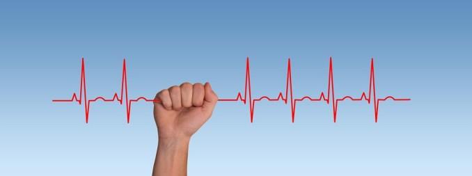 脉冲, 频率, 心跳, 心脏, 曲线, 活, 线程, Seidener 线程, 健康, 疾病, 医疗, 生病