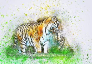 Tigre, Cub, Transportant, Art, Aquarelle, Vintage