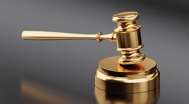 15 choses avocate