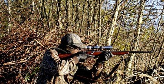 30+ Free Hunting Rifle & Rifle Photos - Pixabay