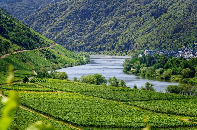 Best wine regions in germany