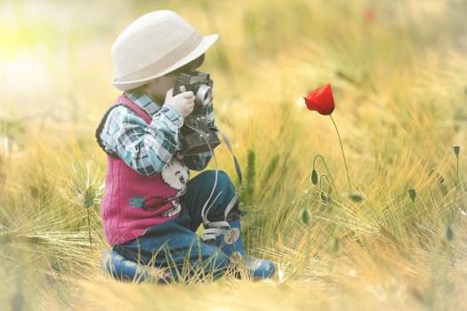 Fiore, Campo, Bambino, Fotografia, Papavero, Flash