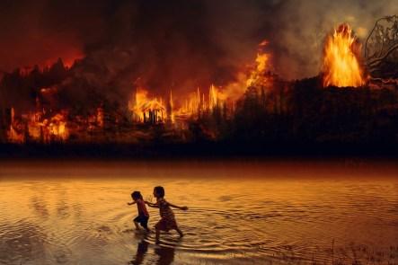 火, 森林火災, 子供, 恐怖, 炎, アマゾン, 熱帯雨林, 荒野, 自然, 破壊, 燃やす, 木, 地球