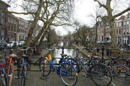 Utrecht, Gracht, Fiets, Fietsen, Brug, Nederland, Bomen