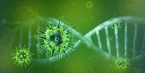 Coronavirus, Corona-Virus, Covid-19, Virus, Pandemie