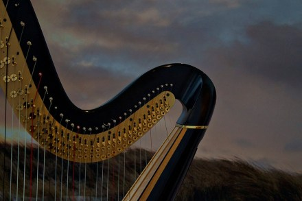 ハープ, 音楽, 弦楽器, 楽器, コンサートのハープ, 音楽楽器, 撥弦楽器