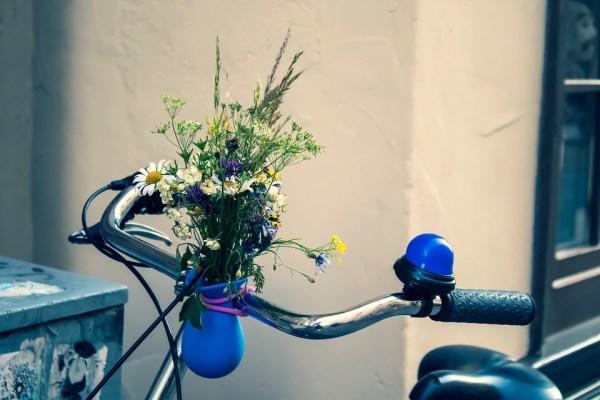Bike, Handlebars, Nostalgia, Nostalgic, Vase, Flowers